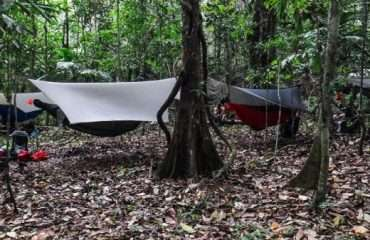 Panama Jungle Camp