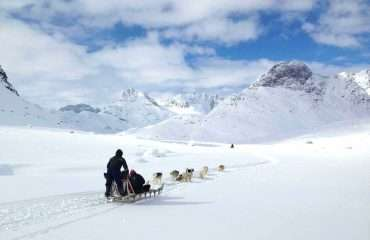 East Greenland Dog Sled