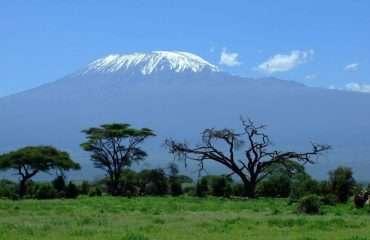 Iconic Kilimanjaro