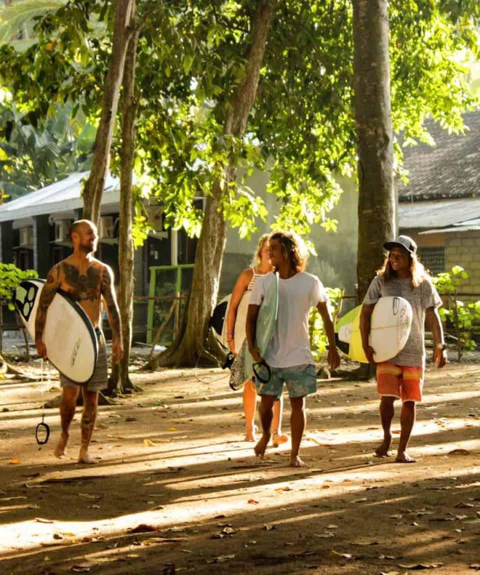 Surf School