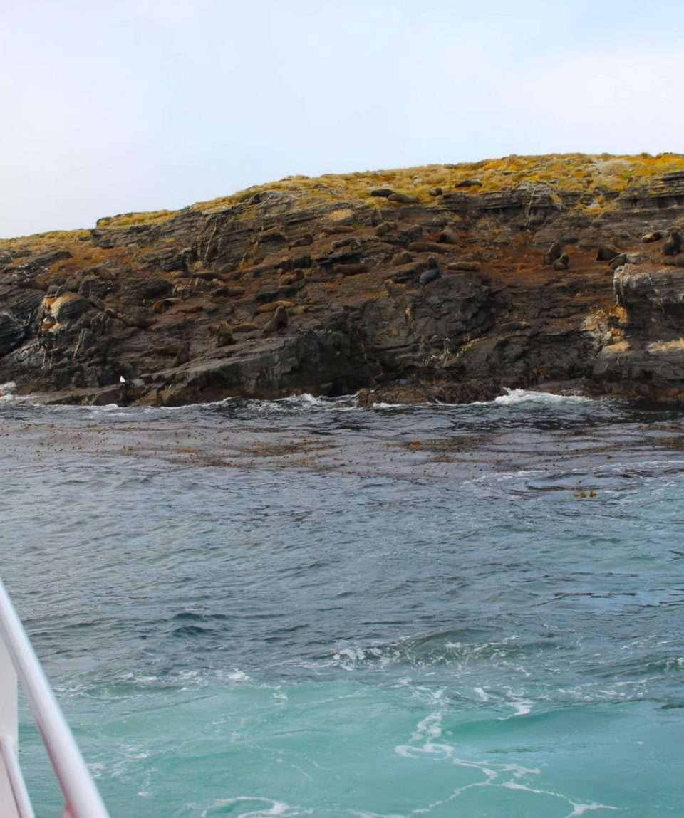 Isla Navarino