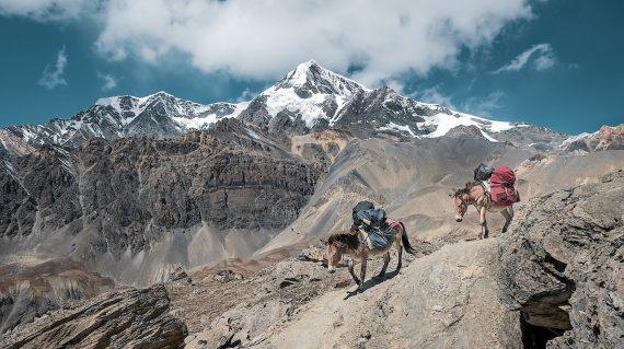 Peaks of Pakistan