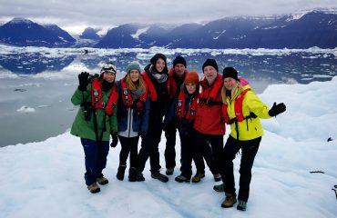 High Arctic Landscape