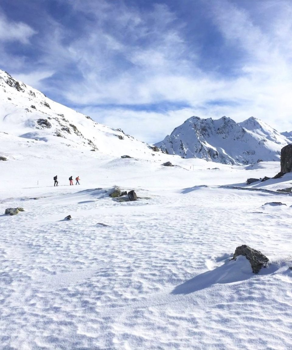 Snowshoe Switzerland