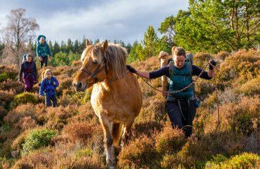 Family Horse Trek
