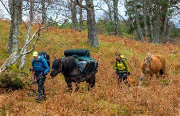 Trekking Scotland
